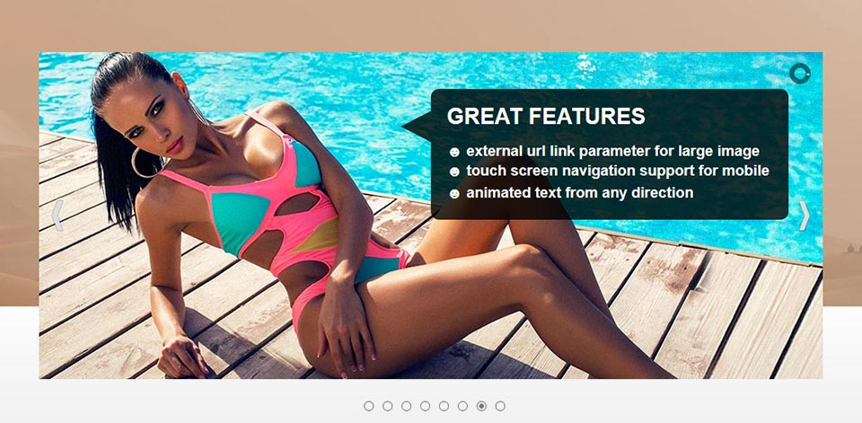 Content Slider - Website Boxed Size - Imposing Skin