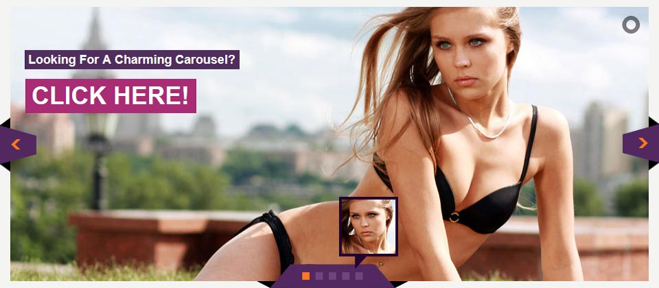 Website Boxed Size - Banner Roatator - Attractive Skin