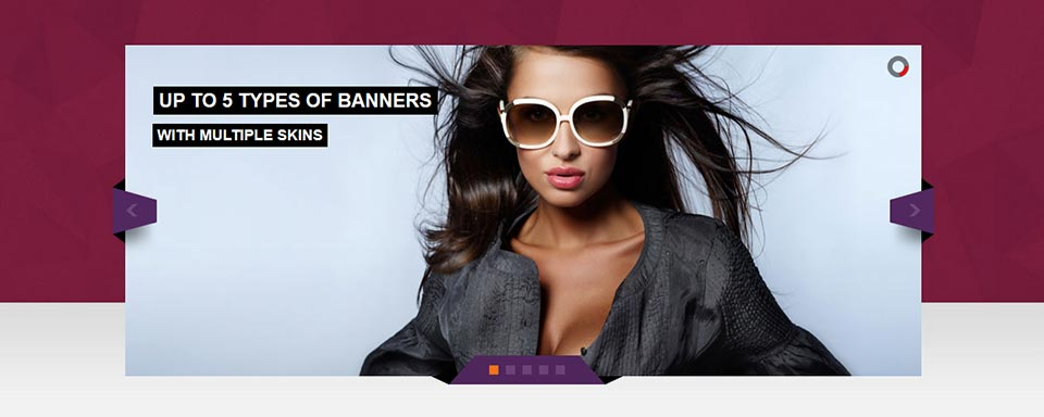 Banner Rotator - Website Boxed Size - Attractive Skin